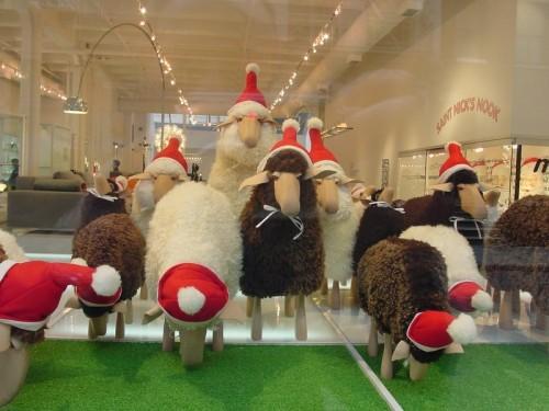 A Merry sheepish Christmas at 'moss'