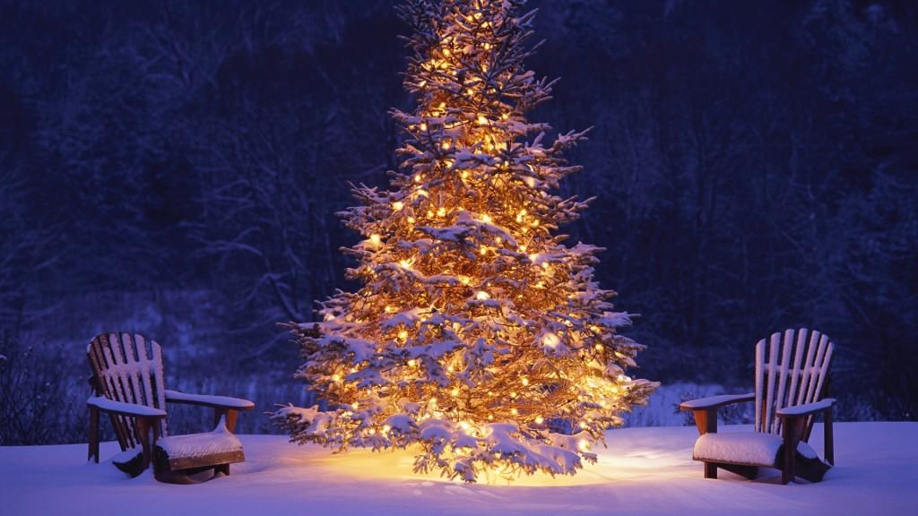 Amazing-Christmas-Tree