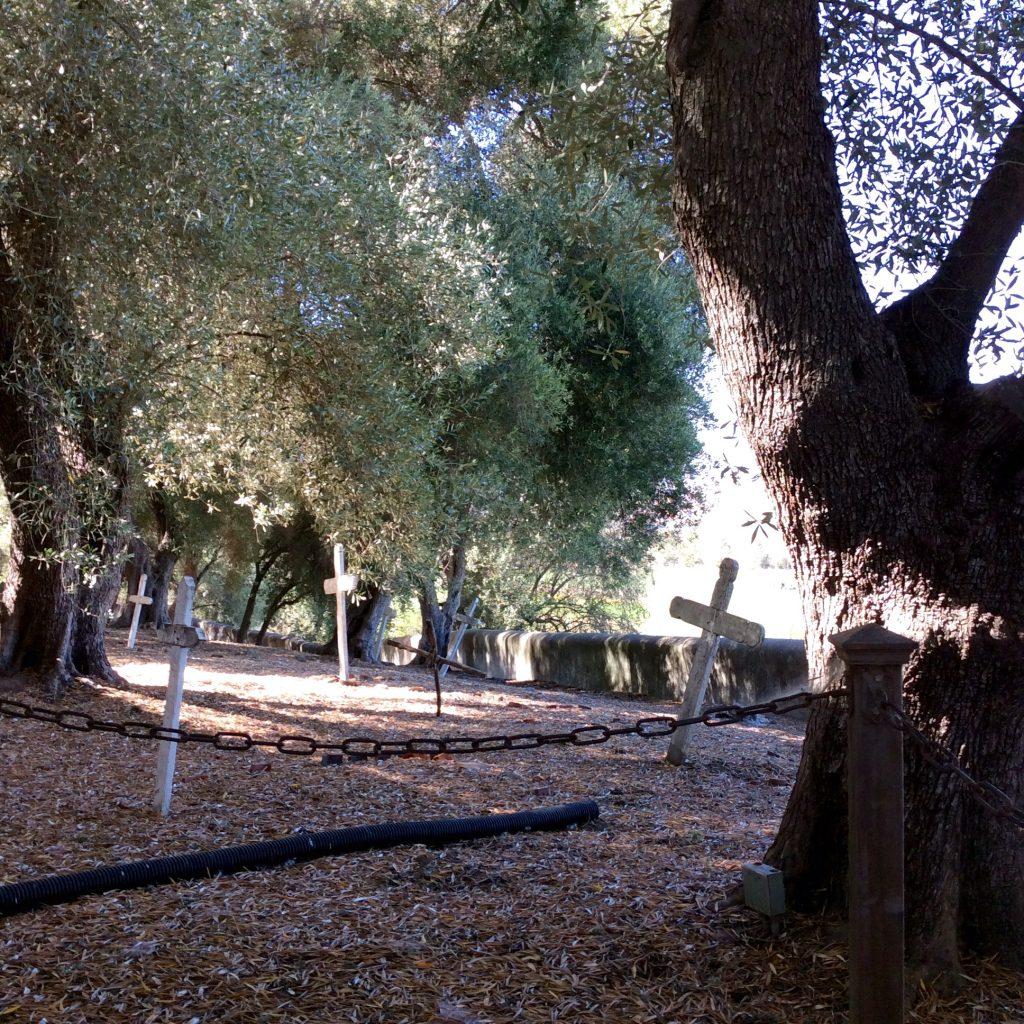 Mission graveyard